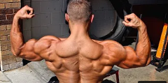 Back Exercises You Need to be Doing