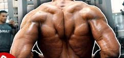 Best Back Workout in the World Workout